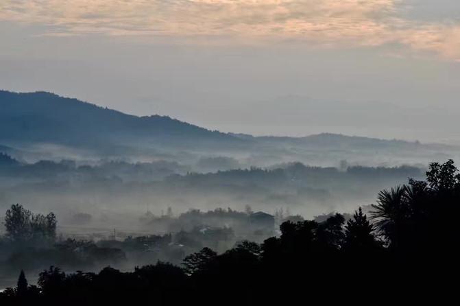 美岕山野温泉度假村,秘境森林树屋,深藏不露的美!