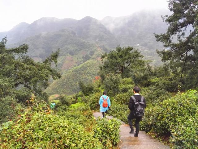 香榧国家森林公园是世界上唯一的古香榧自然保护区,占地50平方公里