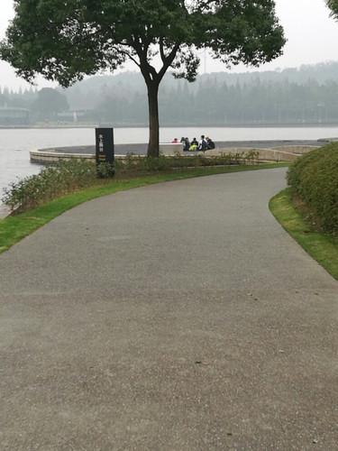 young#月湖雕塑公园 - 游记攻略【携程攻略】