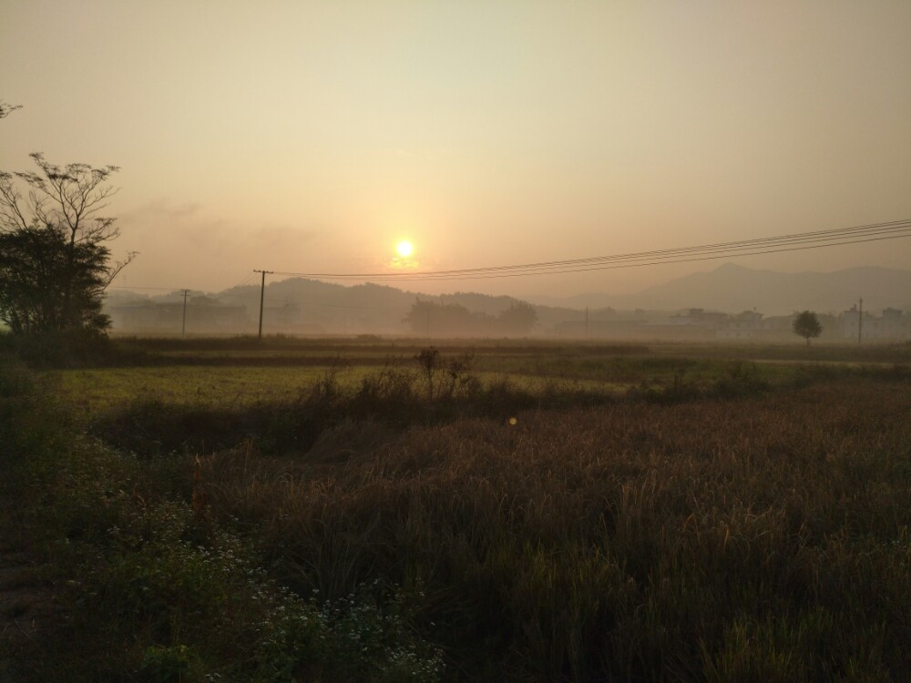 信丰早晨的日出 空气新鲜 乡村