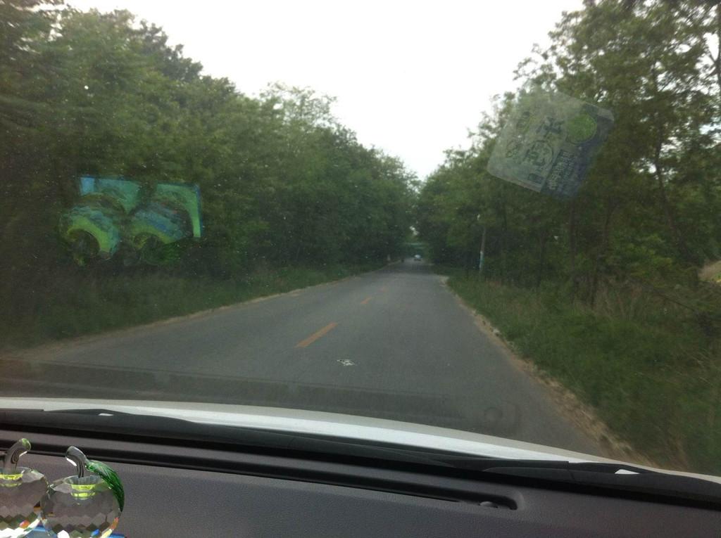 营口仙人岛森林公园