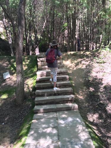 兰州行---徐家山国家森林公园