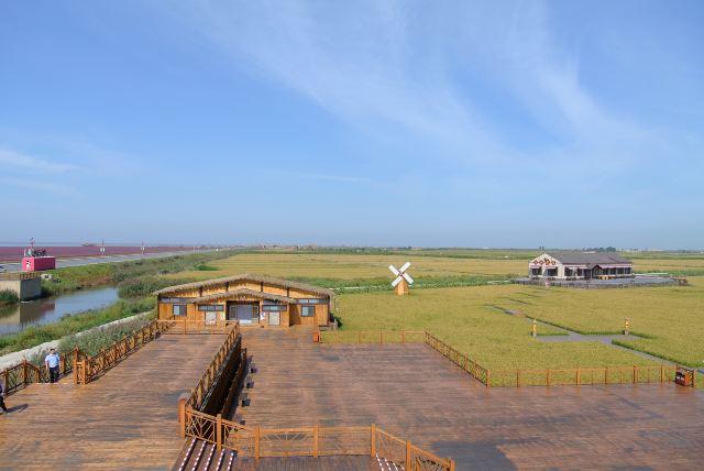 稻田中点缀着风车,小木屋,童话般的风景.