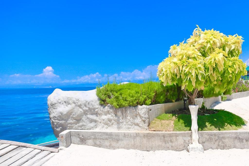 caohagan island 资生堂岛 资生堂岛有廉价的海鲜餐厅,还有最佳的
