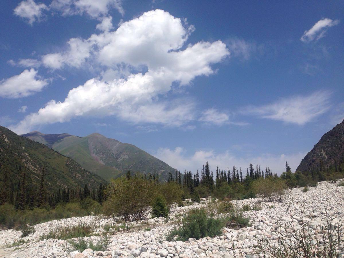 阿拉尔恰国家森林公园  Alarqa   -0