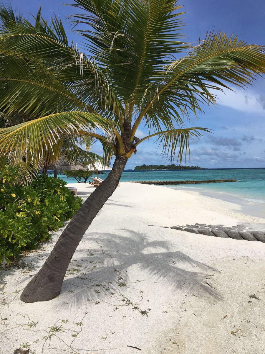 一生必去之地#马代可可亚岛