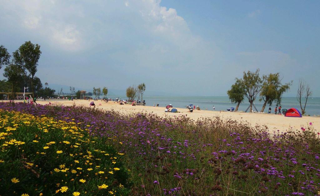 晋宁沙滩公园_晋宁沙滩公园