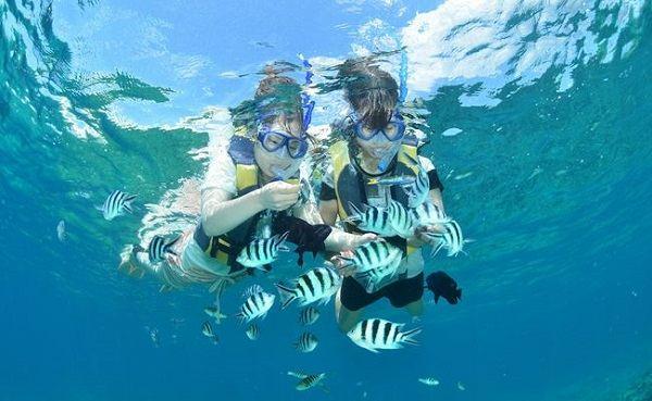 巴厘岛海底漫步—畅游海底世界