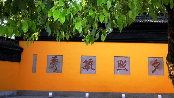 孤山上主要的景观包括中山公园,浙江省博物馆,文澜阁,,放鹤亭,,俞楼