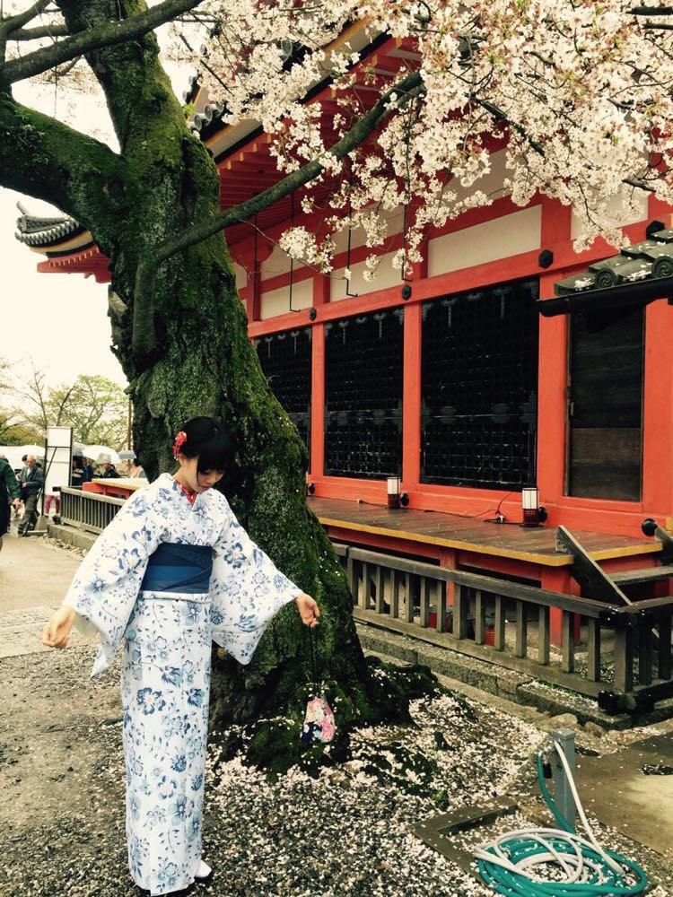相约在樱花季—日本春天の旅程 - 东京游记攻略【携程