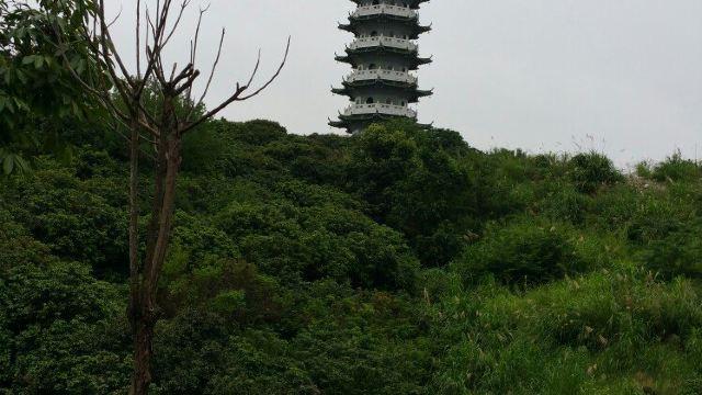 5分 (13条点评) 8 从化文峰塔位于广州从化区街口镇附近,龙潭河,小