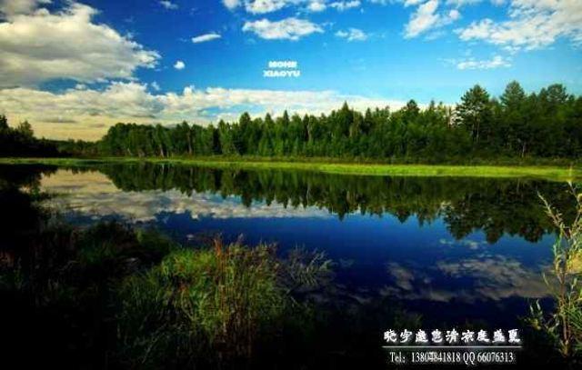 风景 景点 呼伦贝尔大草原