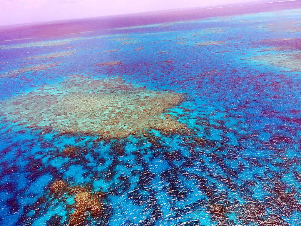 2015年国庆澳大利亚悉尼+墨尔本自驾+大堡礁阿金考特