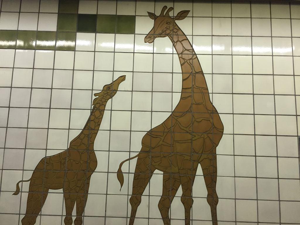 墙上都是各种动物的拼图
