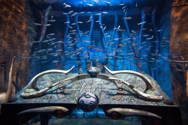 失落的空間水族館  The Lost Chambers Aquarium   -0