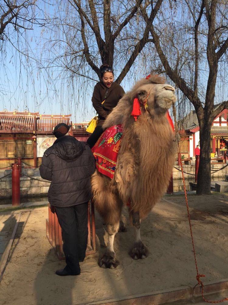 西安最漂亮的动物