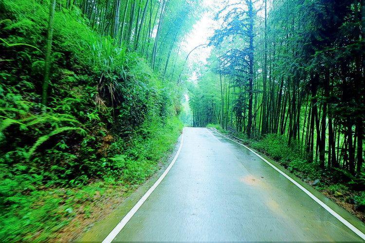 写意金秋# 竹林深处的千泷沟瀑布图片