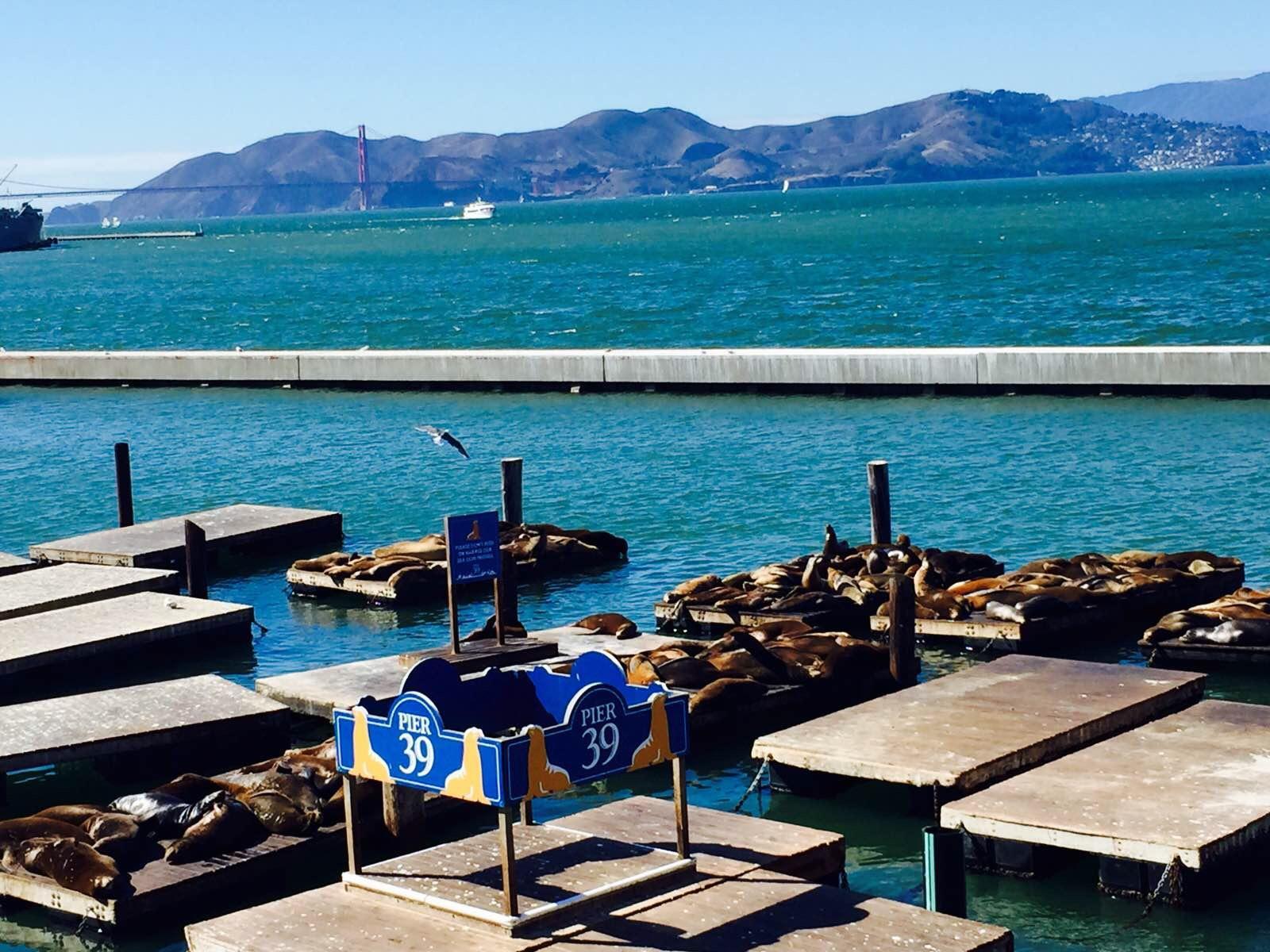 ps:据说蒙特雷渔人码头的海鲜更新鲜,所以我们准备明天过去吃,再加上