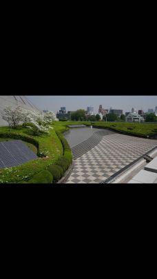 代代木国立综合体育馆-东京-小龙
