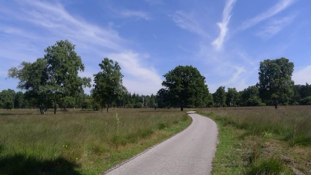 荷兰,梵高森林国家公园