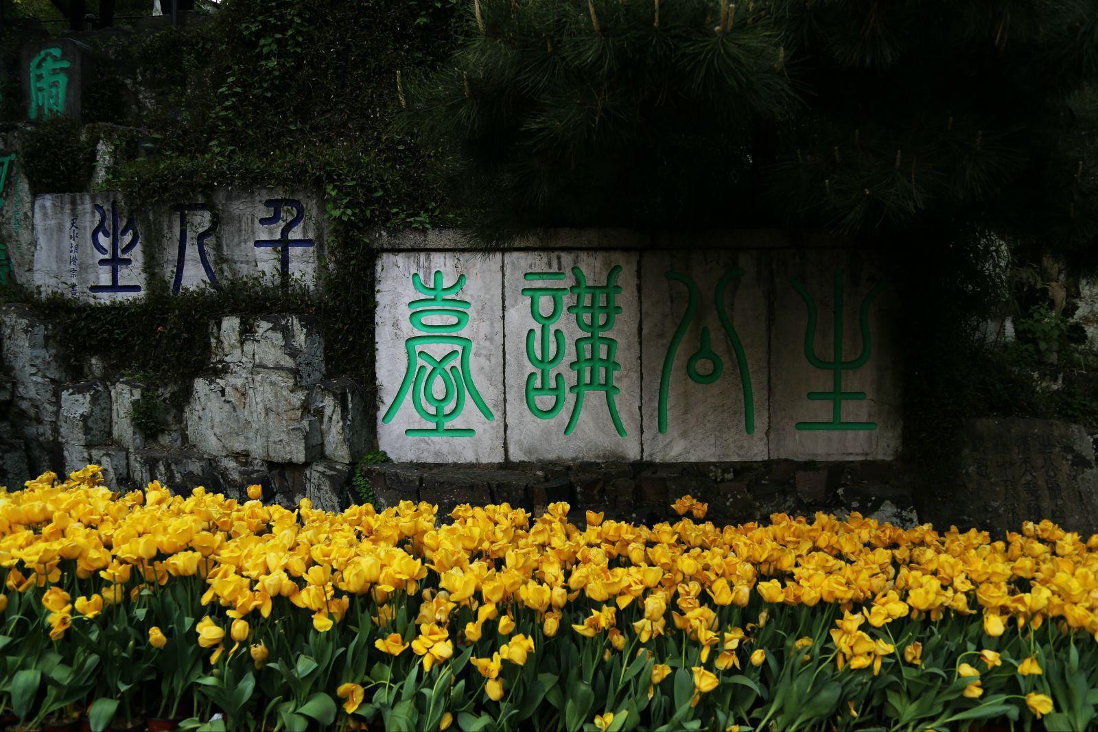 """虎丘  苏州云岩寺塔又称""""虎丘塔"""""""