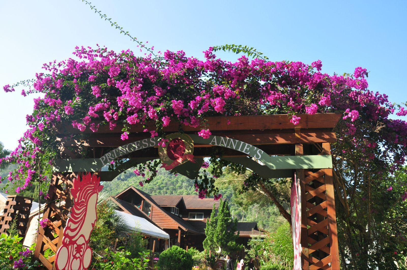 20 12:00 上海虹 薰衣草森林 古堡也是紫线上可以去的景点啦 古堡