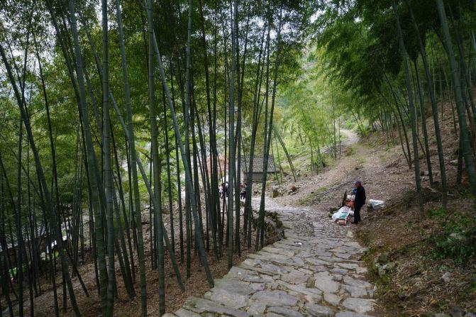 真希望这条曲径通幽的竹林小路永远没有尽头,一直一直的走下去