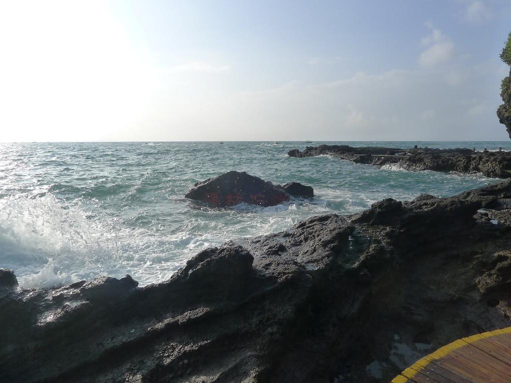 这是《珊瑚沉积岩》,在强烈地震爆发环境下才形成的产物,非常稀有,是