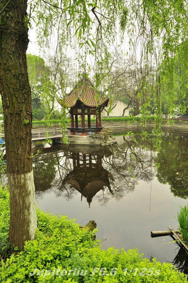 翠屏山公园是宜宾人民休闲,健身,游览的好去处.