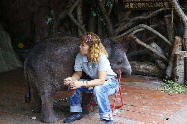动物园管理员