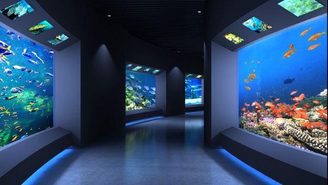 拥有近1000种,约10000只极地海洋动物及10几个主题展馆,营造了集观赏