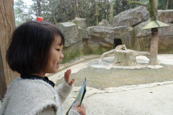 3.19 杭州野生动物园
