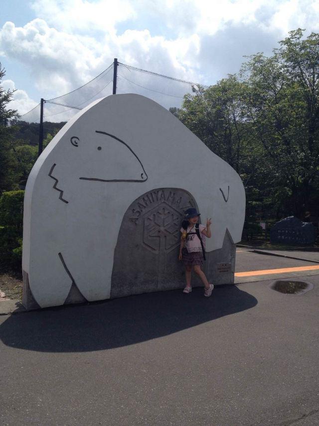 北极熊都是旭川动物园的代表动物
