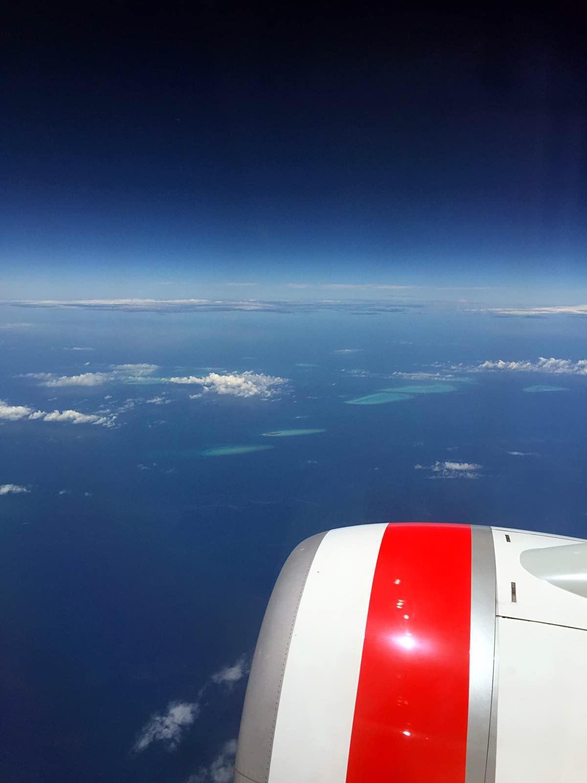 在飞往汉密尔顿岛的飞机上就能看见海里一片一片的珊