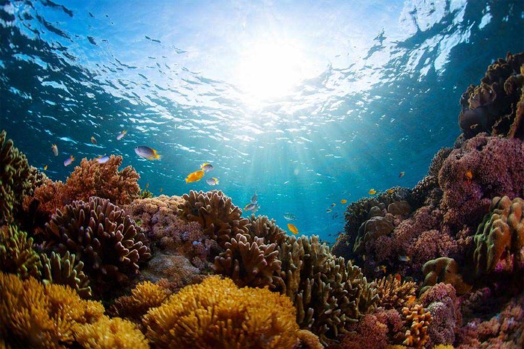 摄影之旅·印度尼西亚巴厘岛6日跟团游·迷你小团