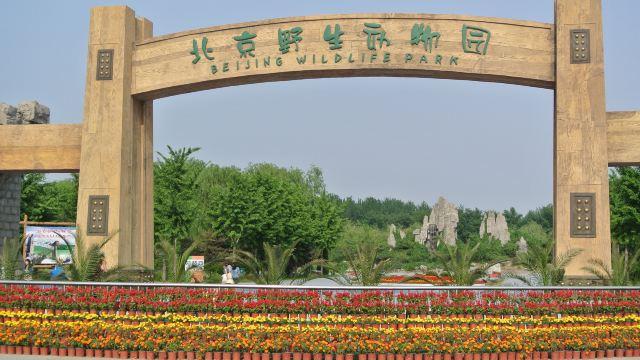 北京野生动物园位于大兴区万