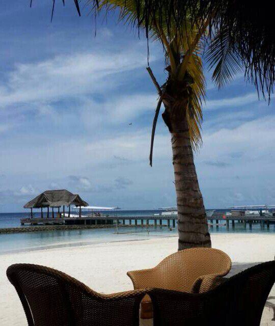麻袋k岛的难舍时光 - 马尔代夫游记攻略【携程攻略】