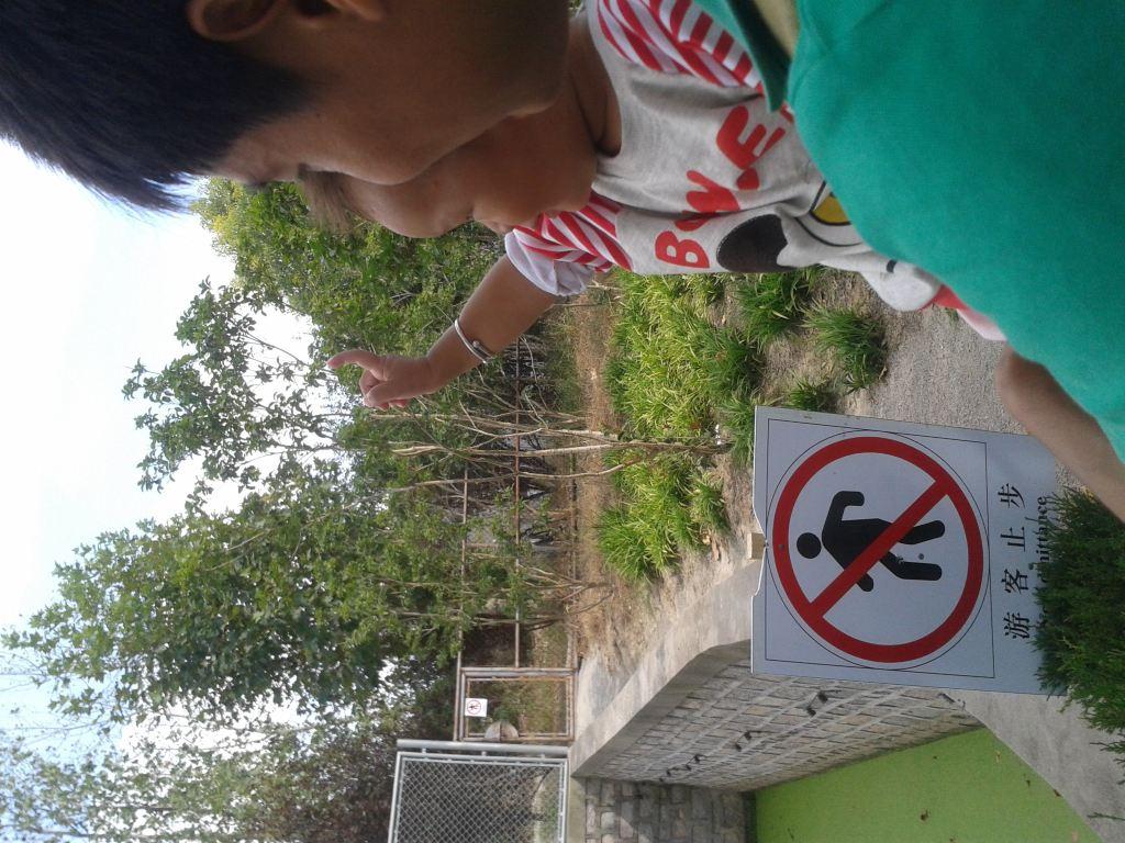 嘉兴到上海野生动物园外滩东方明珠塔二日游