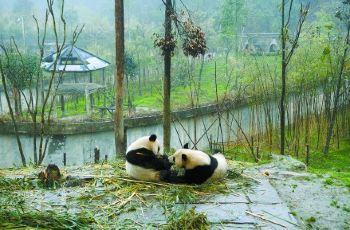 【携程攻略】郑州郑州动物园附近景点