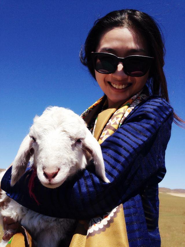 抱着它拍照,小羊说它不怕我们,它可是大草原的小明星哦
