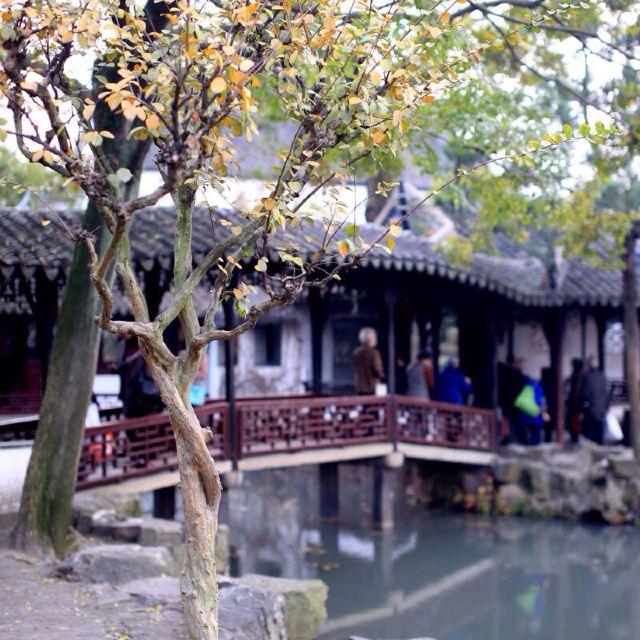 拙政园西侧就是苏州博物馆,附近还有狮子林,苏州民俗博物馆等景点