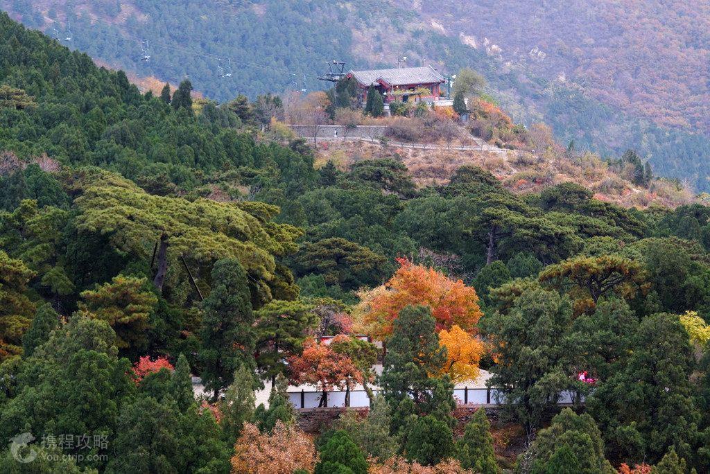 皇家园林园林技艺的特点_中国景观园艺_新浪博客