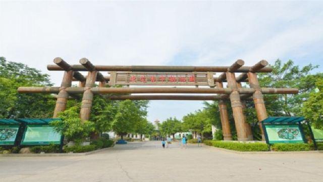 香市动物园门票,东莞香市动物园攻略/地址/图片/门票
