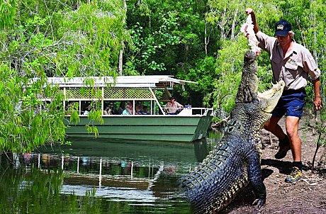 哈德利鳄鱼农场  Hartley's Crocodile Adventures   -0