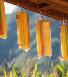 易县游记图文-10.1欢乐遛娃儿最佳打卡点——玉米冒险村去撒欢