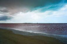 粉红湖-里约拉加尔多-燃烧生命的小胖妞