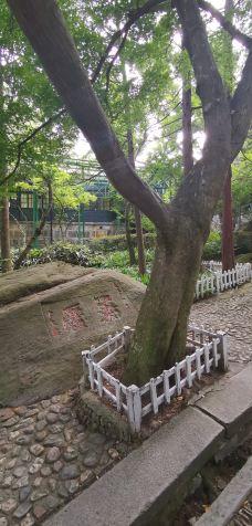 美庐-庐山风景区-Linkesunyan