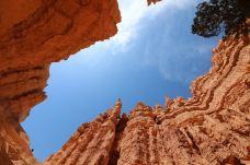 布莱斯峡谷国家公园-犹他州-chenweiwen