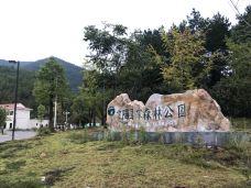 云阳国家森林公园-茶陵-kelly火柴