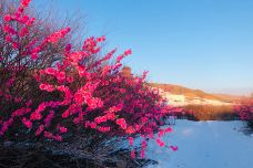 两河圣山-呼伦贝尔-C年度签约摄影师